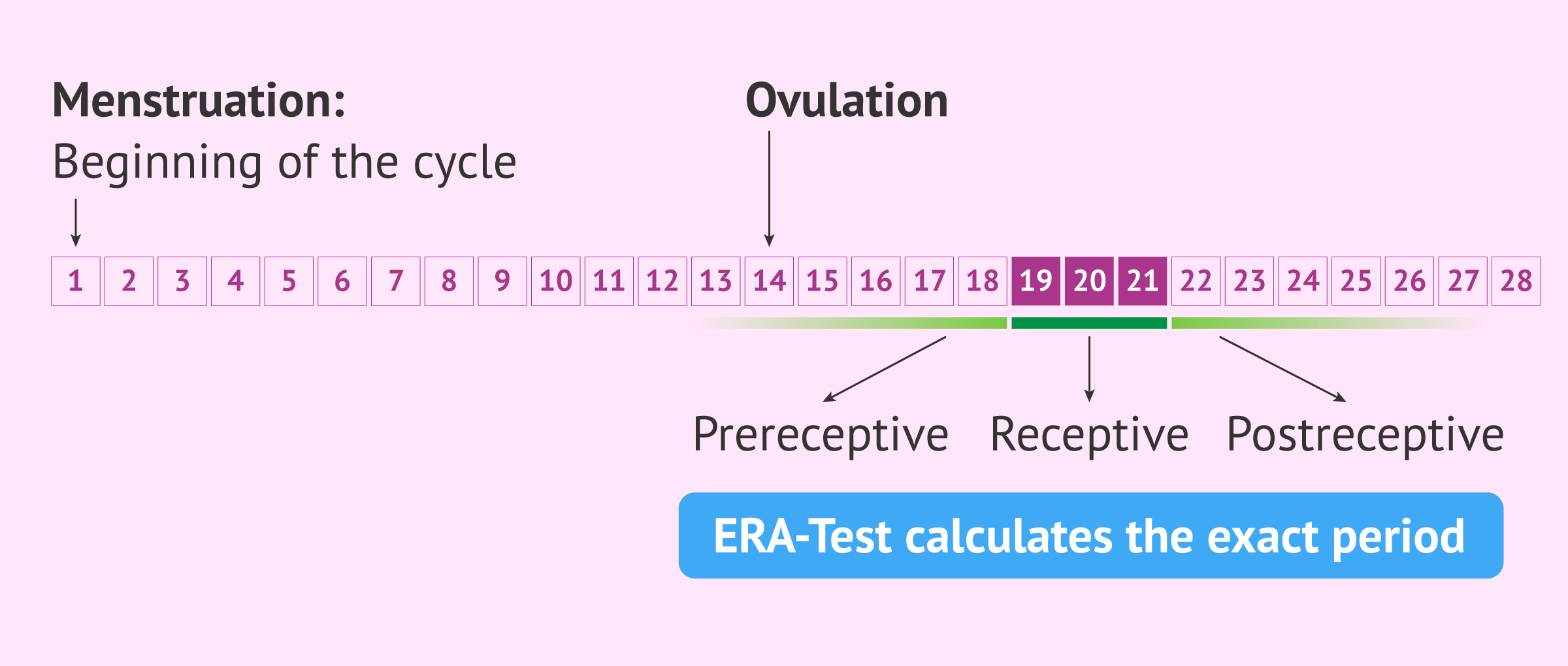 Objective of the ERA test