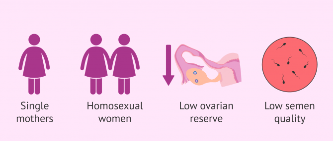 Imagen: When to use doble donor IVF