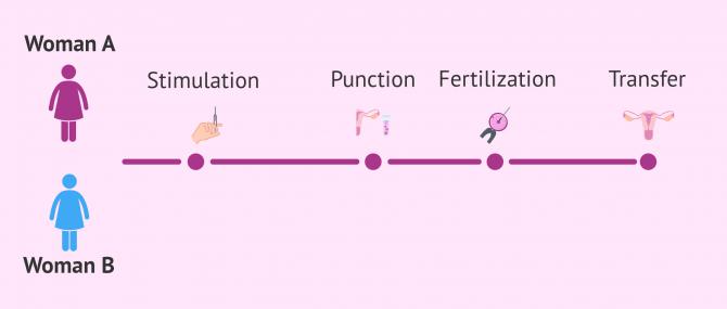 Imagen: IVF for lesbian couples
