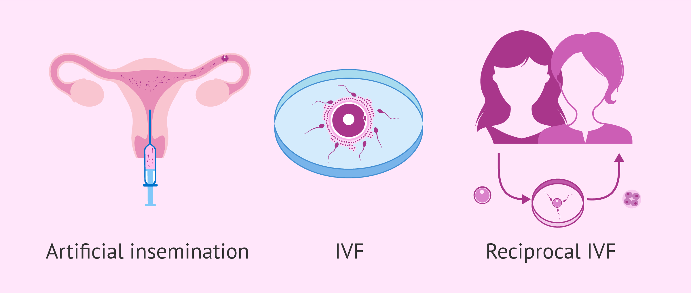 Assisted reproductive technology for lesbian motherhood