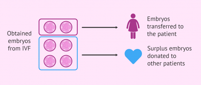 What is Embryo Donation & Adoption?