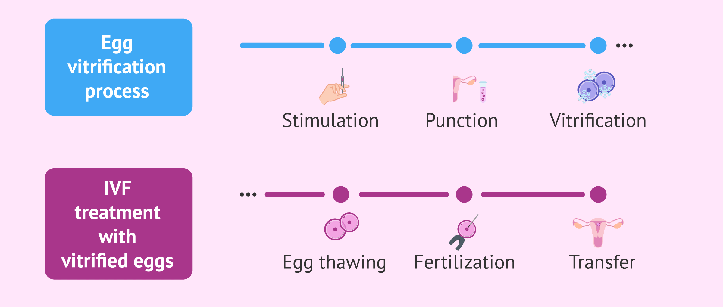 IVF process with frozen eggs