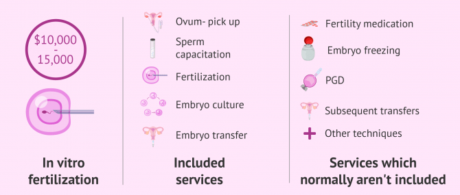 Imagen: What's included in the IVF cost?