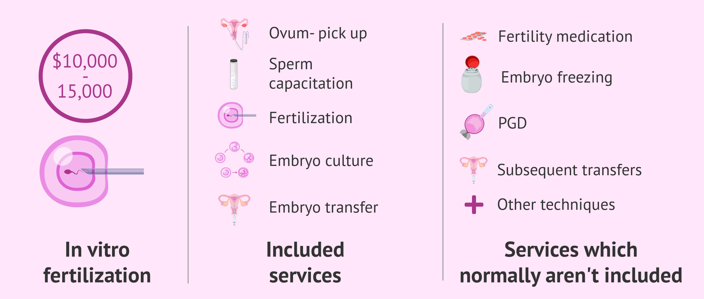 What's included in the IVF cost?