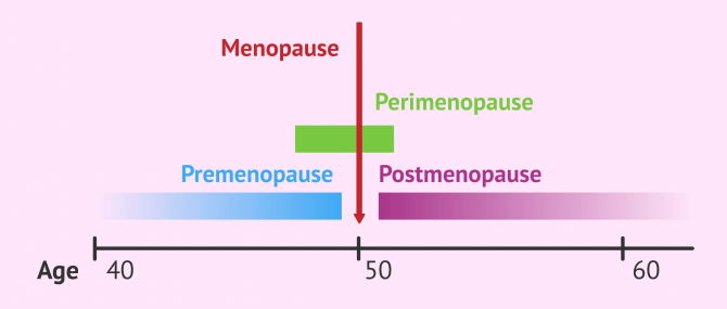 Imagen: Difference between premenopause and perimenopause
