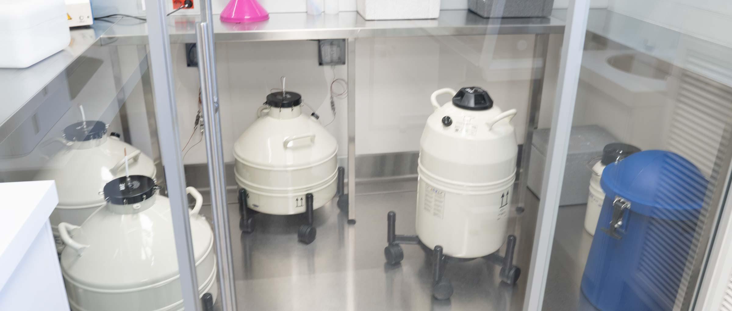 Cryopreservation area Ginemed Madrid Center