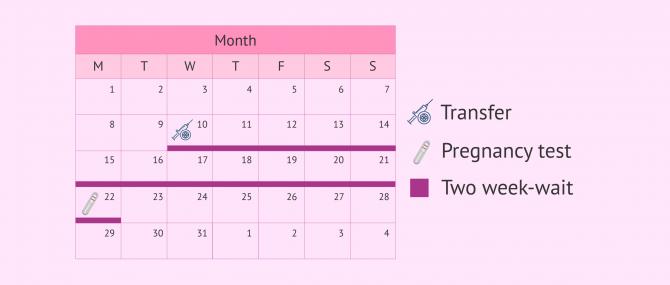 Imagen: Pregnancy test after IVF-ICSI