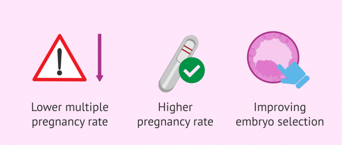 What Are the Benefits of the Geri Time-Lapse Incubator in IVF?
