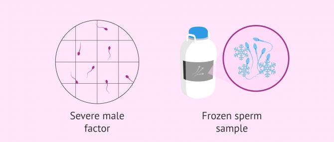Imagen: When Fertile Chip is not useful