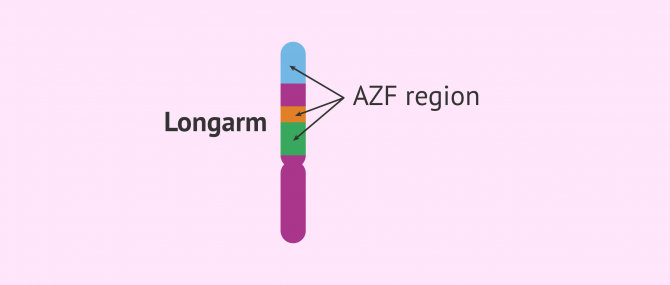 Imagen: azf region
