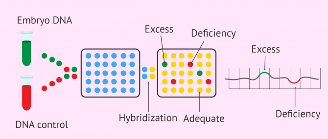 Imagen: Genetic analysis by CGH arrays