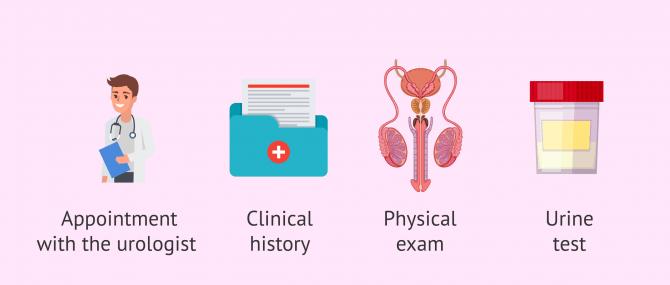 Imagen: Evaluation of retrograde ejaculation