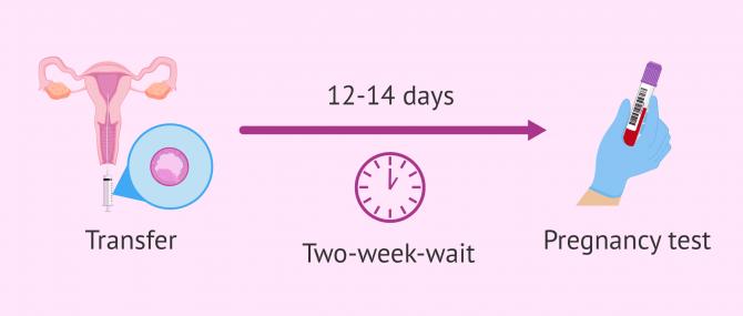 Imagen: Two-week wait