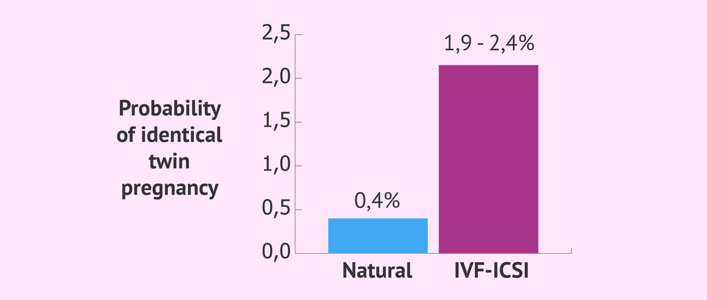 Probability of identical twins by in vitro fertilisation