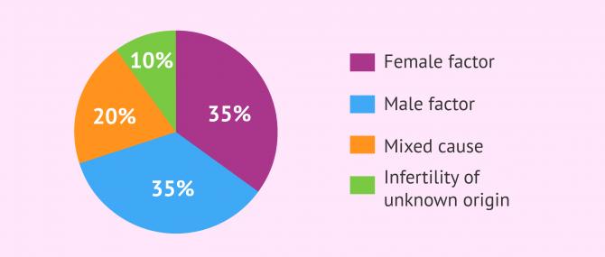 Imagen: Origin of infertility